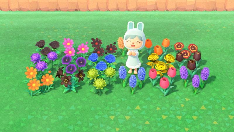 あつ森の色々な花